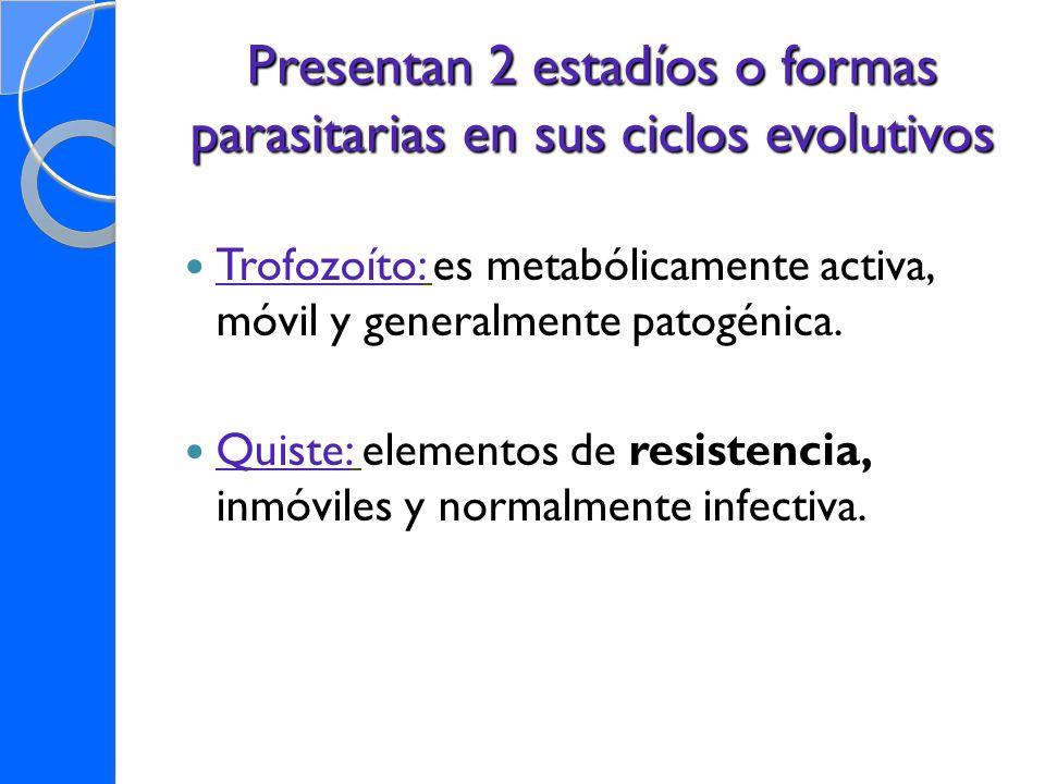 Presentan 2 estadíos o formas parasitarias en sus ciclos evolutivos Trofozoíto: es metabólicamente activa, móvil y generalmente patogénica. Quiste: el