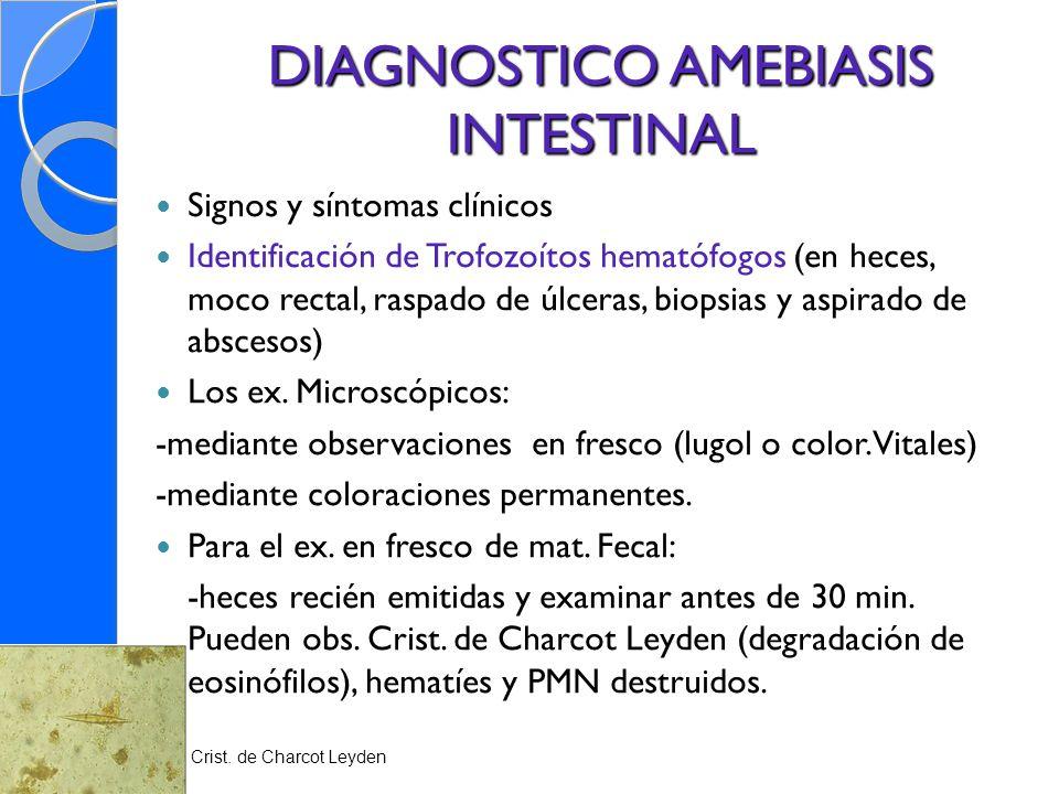 DIAGNOSTICO AMEBIASIS INTESTINAL Signos y síntomas clínicos Identificación de Trofozoítos hematófogos (en heces, moco rectal, raspado de úlceras, biop