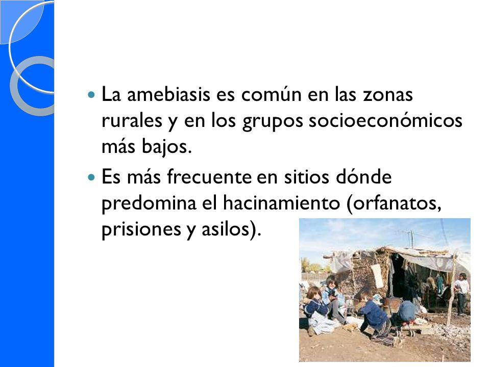 La amebiasis es común en las zonas rurales y en los grupos socioeconómicos más bajos. Es más frecuente en sitios dónde predomina el hacinamiento (orfa