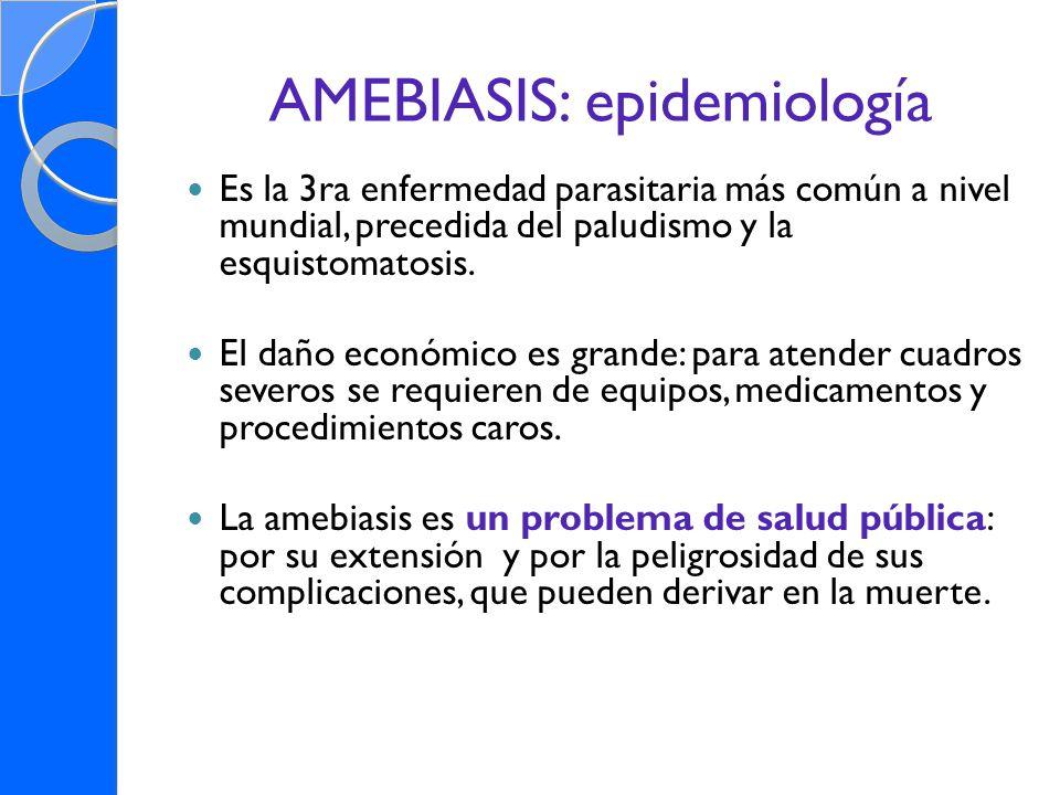 AMEBIASIS: epidemiología Es la 3ra enfermedad parasitaria más común a nivel mundial, precedida del paludismo y la esquistomatosis. El daño económico e
