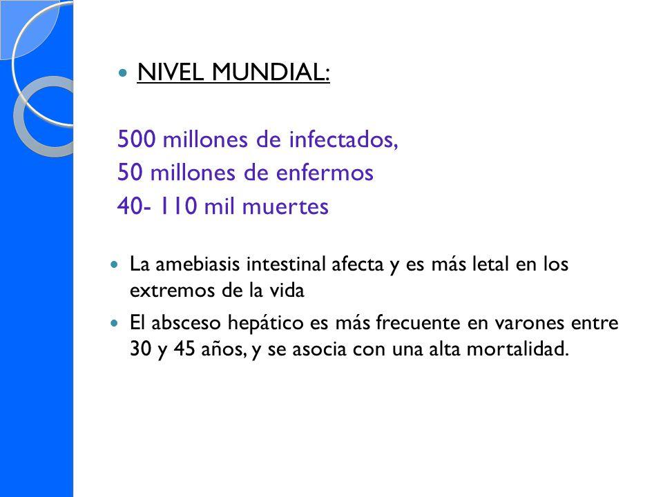 NIVEL MUNDIAL: 500 millones de infectados, 50 millones de enfermos 40- 110 mil muertes La amebiasis intestinal afecta y es más letal en los extremos d