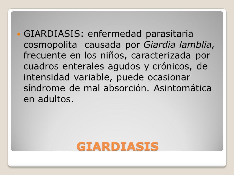 GIARDIASIS GIARDIASIS: enfermedad parasitaria cosmopolita causada por Giardia lamblia, frecuente en los niños, caracterizada por cuadros enterales agu