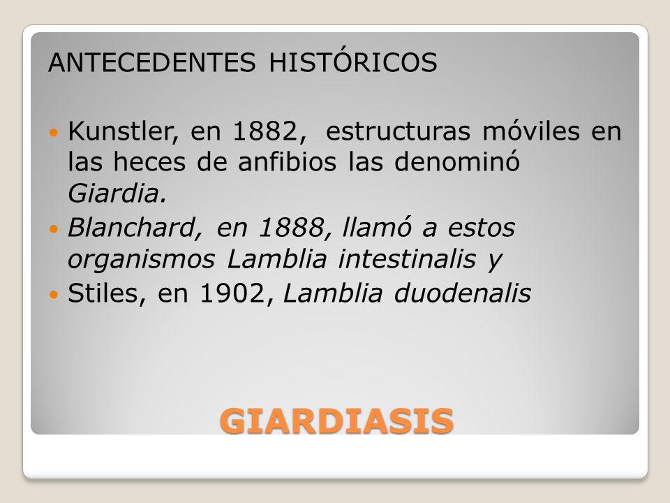 GIARDIASIS ANTECEDENTES HISTÓRICOS Kunstler, en 1882, estructuras móviles en las heces de anfibios las denominó Giardia. Blanchard, en 1888, llamó a e