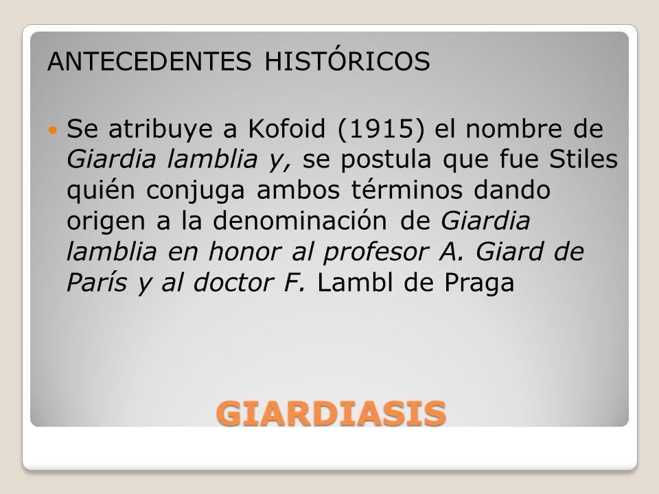 GIARDIASIS ANTECEDENTES HISTÓRICOS Se atribuye a Kofoid (1915) el nombre de Giardia lamblia y, se postula que fue Stiles quién conjuga ambos términos