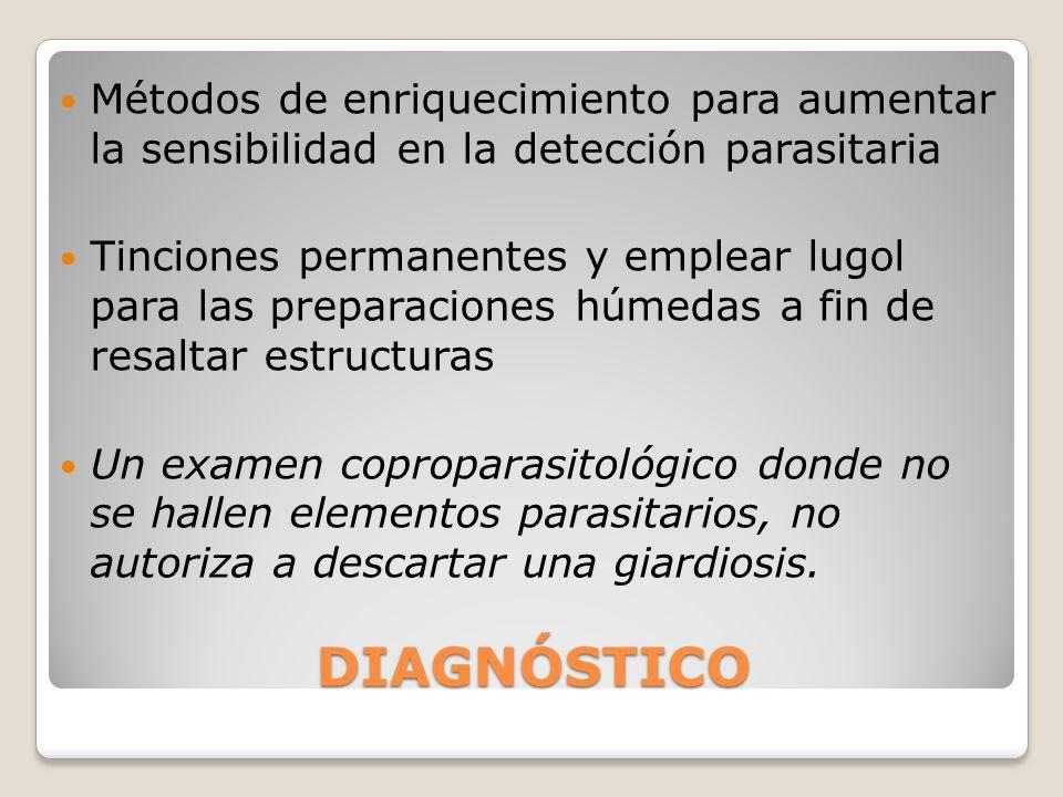 DIAGNÓSTICO Métodos de enriquecimiento para aumentar la sensibilidad en la detección parasitaria Tinciones permanentes y emplear lugol para las prepar