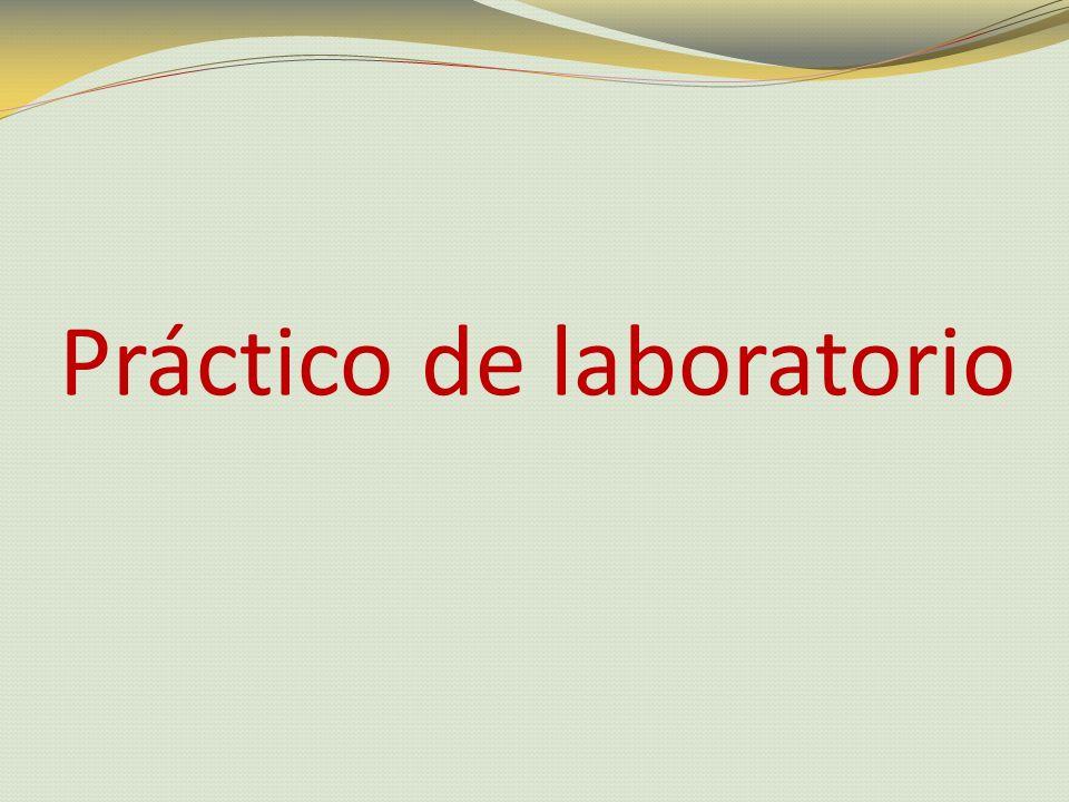 Práctico de laboratorio
