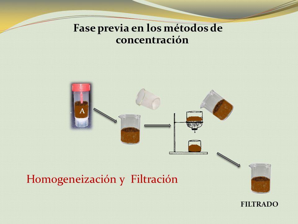 Fase previa en los métodos de concentración Homogeneización y Filtración FILTRADO A
