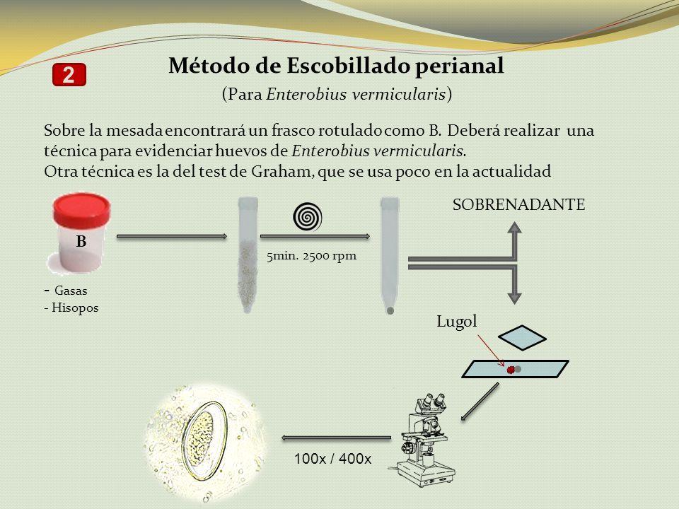 Método de Escobillado perianal (Para Enterobius vermicularis) Sobre la mesada encontrará un frasco rotulado como B. Deberá realizar una técnica para e