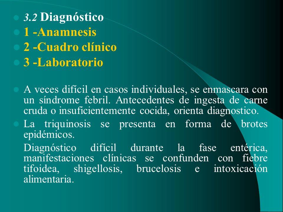 3.2 Diagnóstico 1 -Anamnesis 2 -Cuadro clínico 3 -Laboratorio A veces difícil en casos individuales, se enmascara con un síndrome febril. Antecedentes