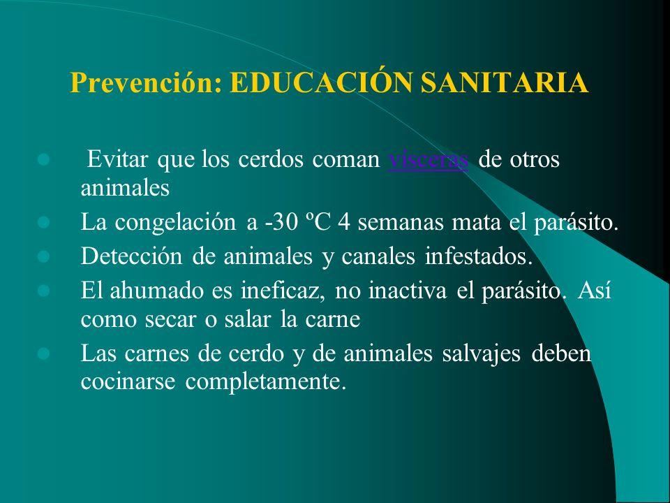 Prevención: EDUCACIÓN SANITARIA Evitar que los cerdos coman vísceras de otros animalesvísceras La congelación a -30 ºC 4 semanas mata el parásito. Det