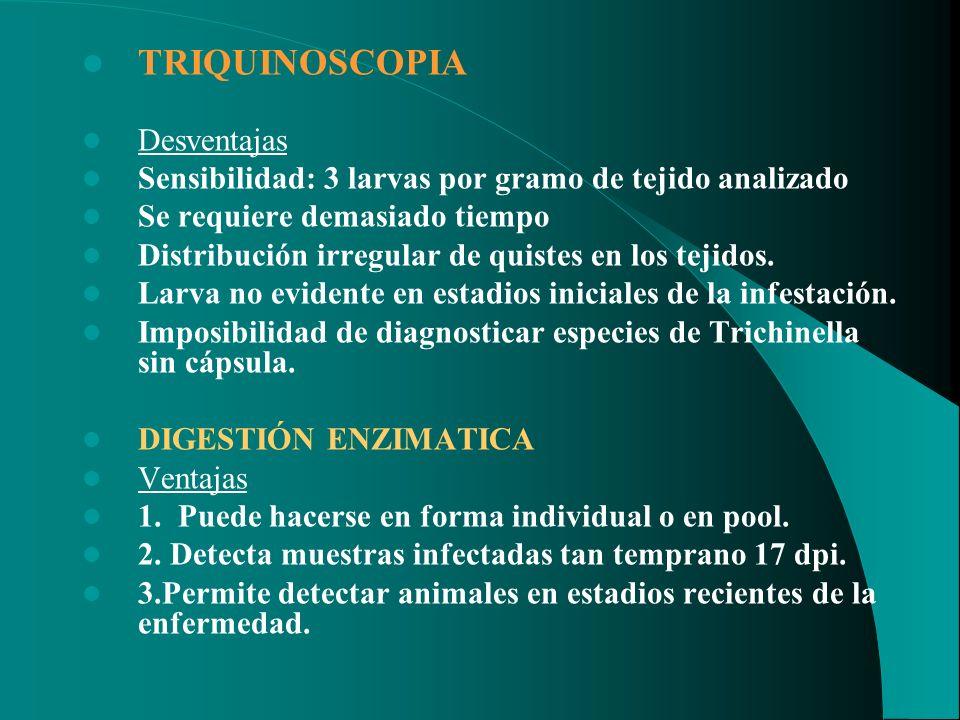 TRIQUINOSCOPIA Desventajas Sensibilidad: 3 larvas por gramo de tejido analizado Se requiere demasiado tiempo Distribución irregular de quistes en los