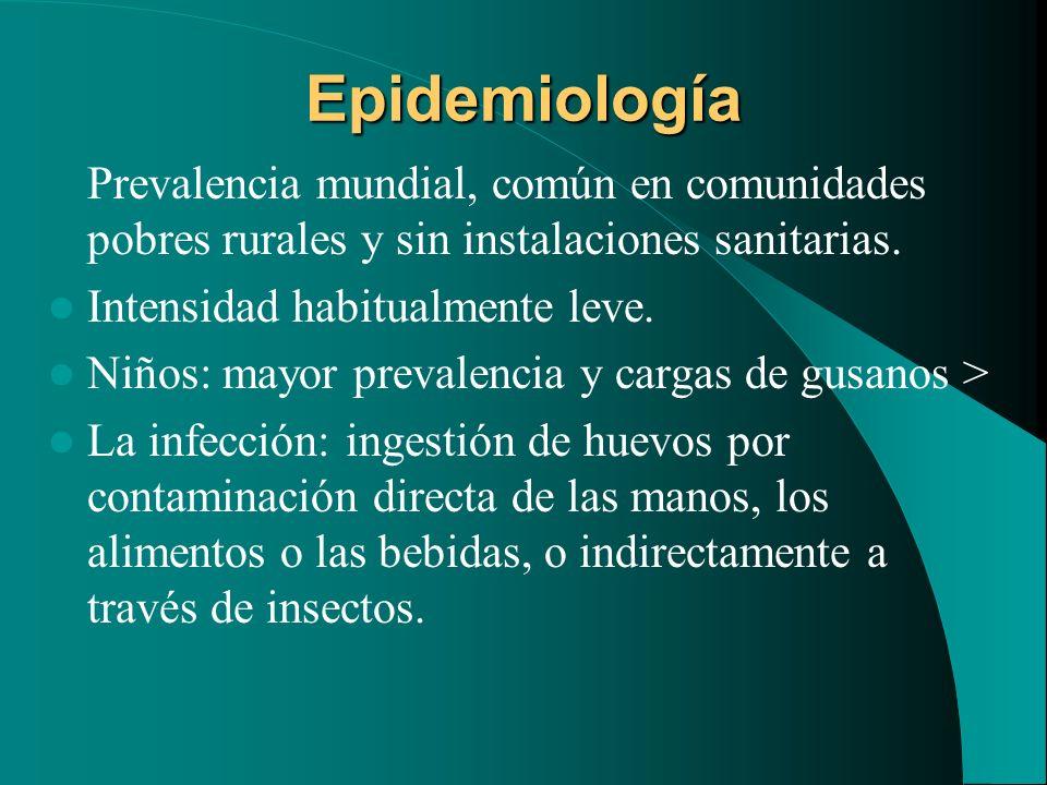 Epidemiología Prevalencia mundial, común en comunidades pobres rurales y sin instalaciones sanitarias. Intensidad habitualmente leve. Niños: mayor pre