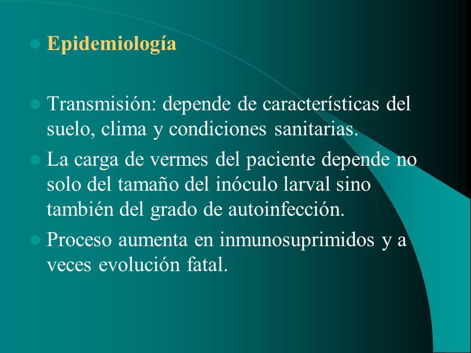 Epidemiología Transmisión: depende de características del suelo, clima y condiciones sanitarias. La carga de vermes del paciente depende no solo del t