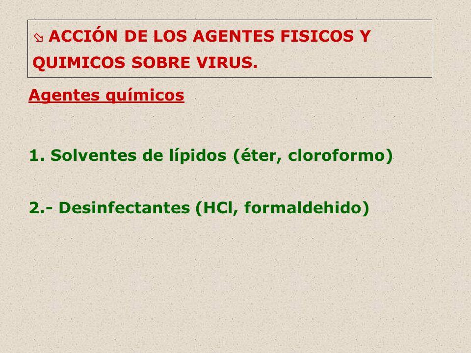 ACCIÓN DE LOS AGENTES FISICOS Y QUIMICOS SOBRE VIRUS. Agentes químicos 1. Solventes de lípidos (éter, cloroformo) 2.- Desinfectantes (HCl, formaldehid