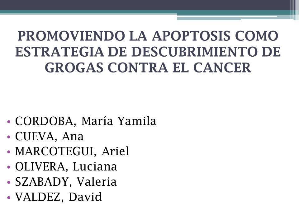 PROMOVIENDO LA APOPTOSIS COMO ESTRATEGIA DE DESCUBRIMIENTO DE GROGAS CONTRA EL CANCER CORDOBA, María Yamila CUEVA, Ana MARCOTEGUI, Ariel OLIVERA, Luci