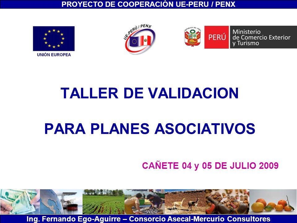 TALLER DE VALIDACION PARA PLANES ASOCIATIVOS CAÑETE 04 y 05 DE JULIO 2009 PROYECTO DE COOPERACIÓN UE-PERU / PENX Ing. Fernando Ego-Aguirre – Consorcio