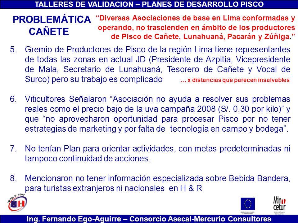 TALLERES DE VALIDACION – PLANES DE DESARROLLO PISCO Ing. Fernando Ego-Aguirre – Consorcio Asecal-Mercurio Consultores 5.Gremio de Productores de Pisco