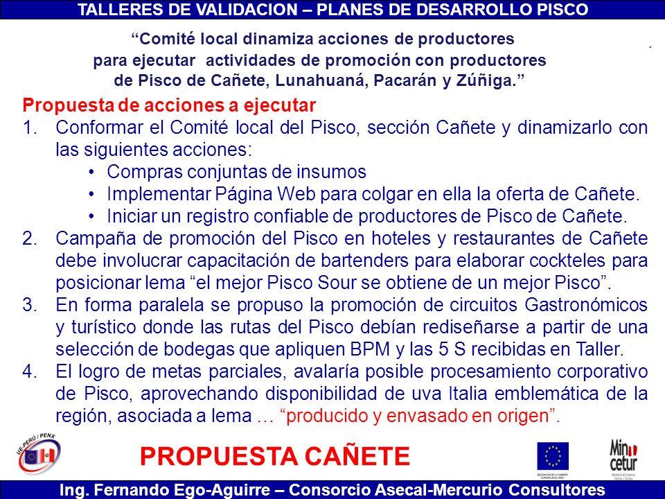 TALLERES DE VALIDACION – PLANES DE DESARROLLO PISCO Ing. Fernando Ego-Aguirre – Consorcio Asecal-Mercurio Consultores Propuesta de acciones a ejecutar