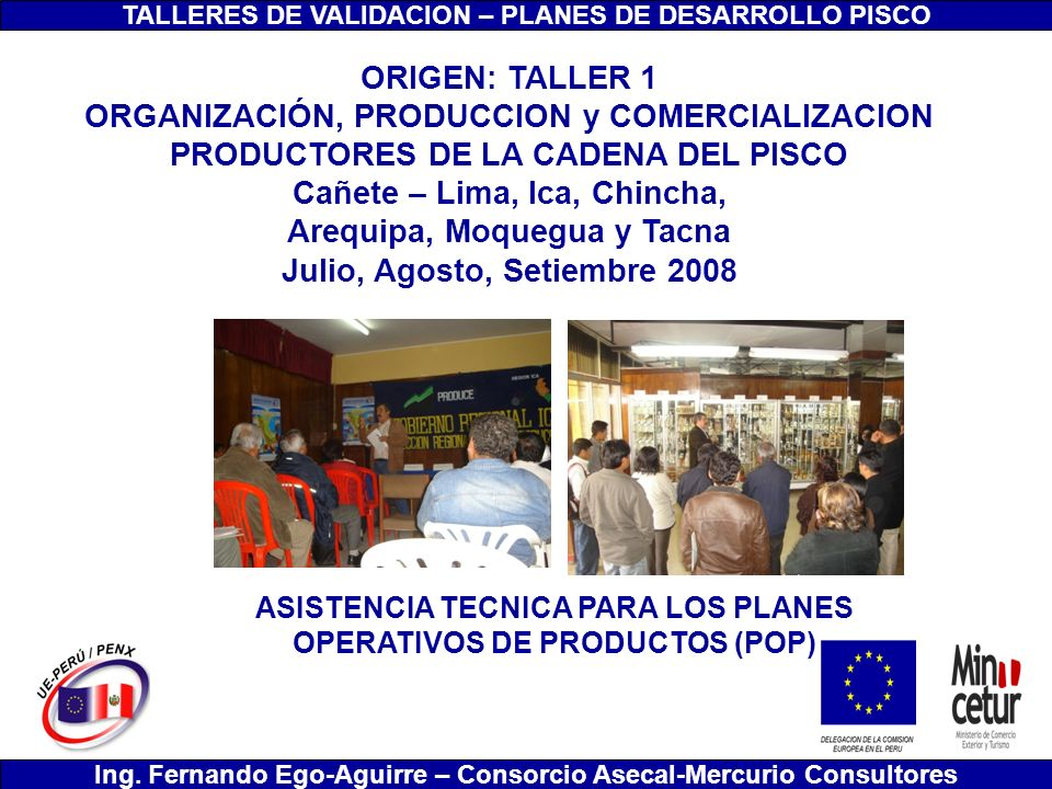 TALLERES DE VALIDACION – PLANES DE DESARROLLO PISCO Ing. Fernando Ego-Aguirre – Consorcio Asecal-Mercurio Consultores ORIGEN: TALLER 1 ORGANIZACIÓN, P