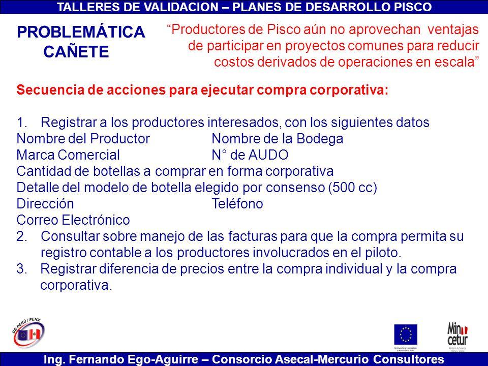 TALLERES DE VALIDACION – PLANES DE DESARROLLO PISCO Ing. Fernando Ego-Aguirre – Consorcio Asecal-Mercurio Consultores Secuencia de acciones para ejecu