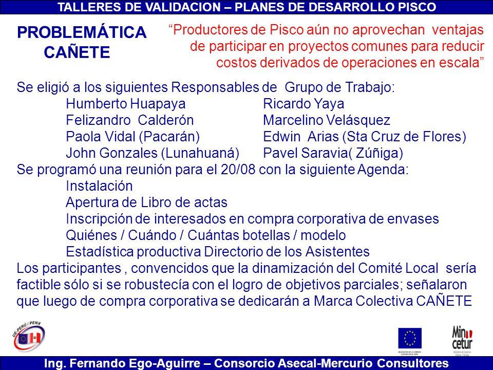 TALLERES DE VALIDACION – PLANES DE DESARROLLO PISCO Ing. Fernando Ego-Aguirre – Consorcio Asecal-Mercurio Consultores Se eligió a los siguientes Respo