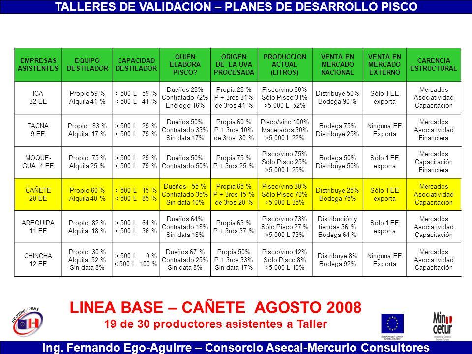 TALLERES DE VALIDACION – PLANES DE DESARROLLO PISCO Ing. Fernando Ego-Aguirre – Consorcio Asecal-Mercurio Consultores LINEA BASE – CAÑETE AGOSTO 2008