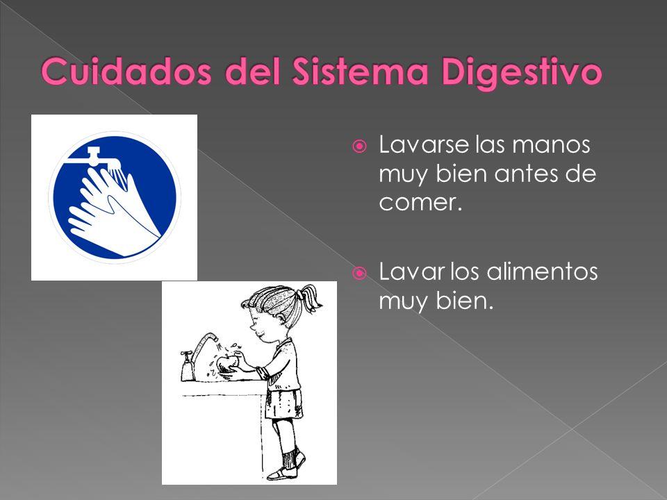 Lavarse las manos muy bien antes de comer. Lavar los alimentos muy bien.
