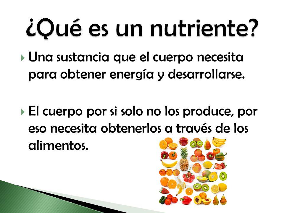 Una sustancia que el cuerpo necesita para obtener energía y desarrollarse. El cuerpo por si solo no los produce, por eso necesita obtenerlos a través
