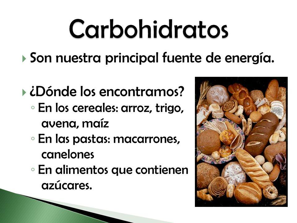 Son nuestra principal fuente de energía. ¿Dónde los encontramos? En los cereales: arroz, trigo, avena, maíz En las pastas: macarrones, canelones En al