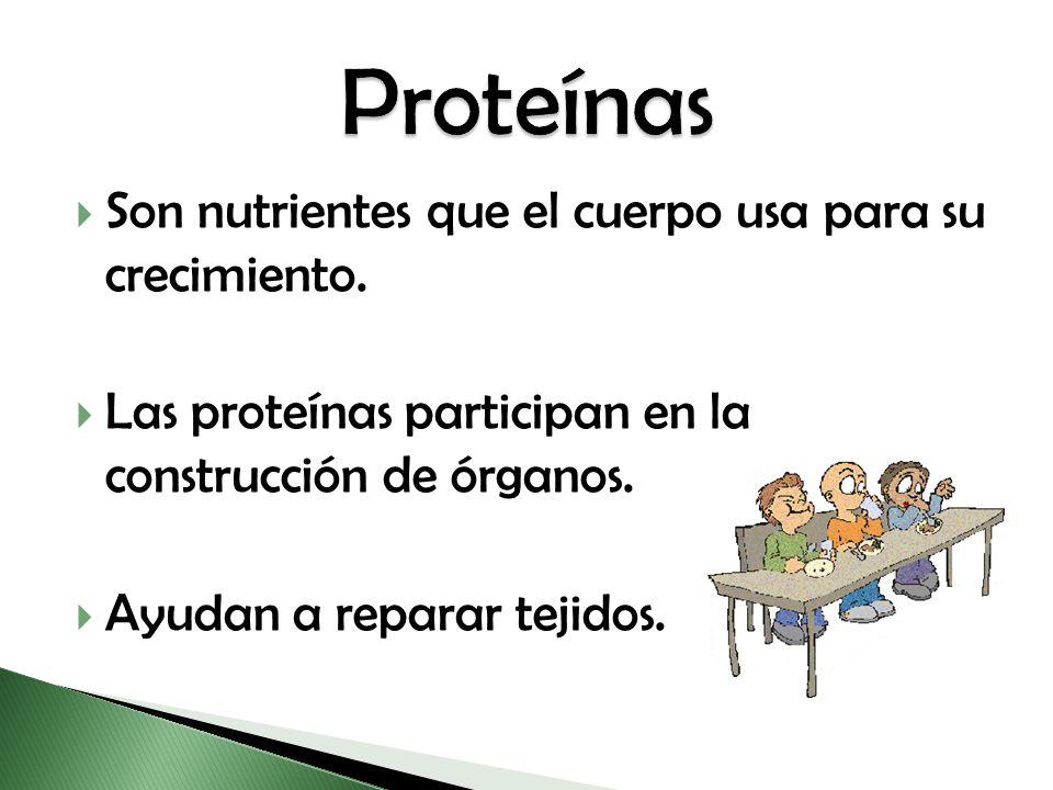 Son nutrientes que el cuerpo usa para su crecimiento. Las proteínas participan en la construcción de órganos. Ayudan a reparar tejidos.