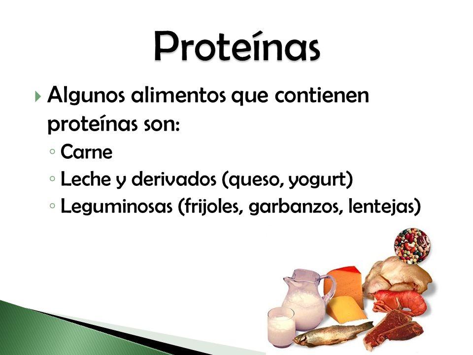 Algunos alimentos que contienen proteínas son: Carne Leche y derivados (queso, yogurt) Leguminosas (frijoles, garbanzos, lentejas)