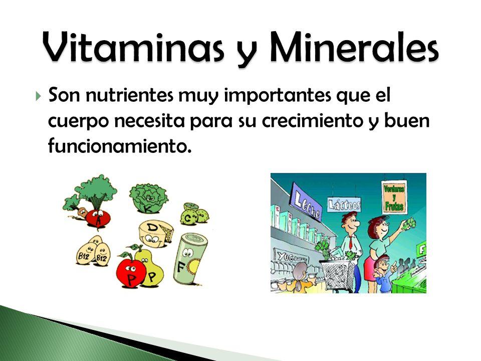 Son nutrientes muy importantes que el cuerpo necesita para su crecimiento y buen funcionamiento.