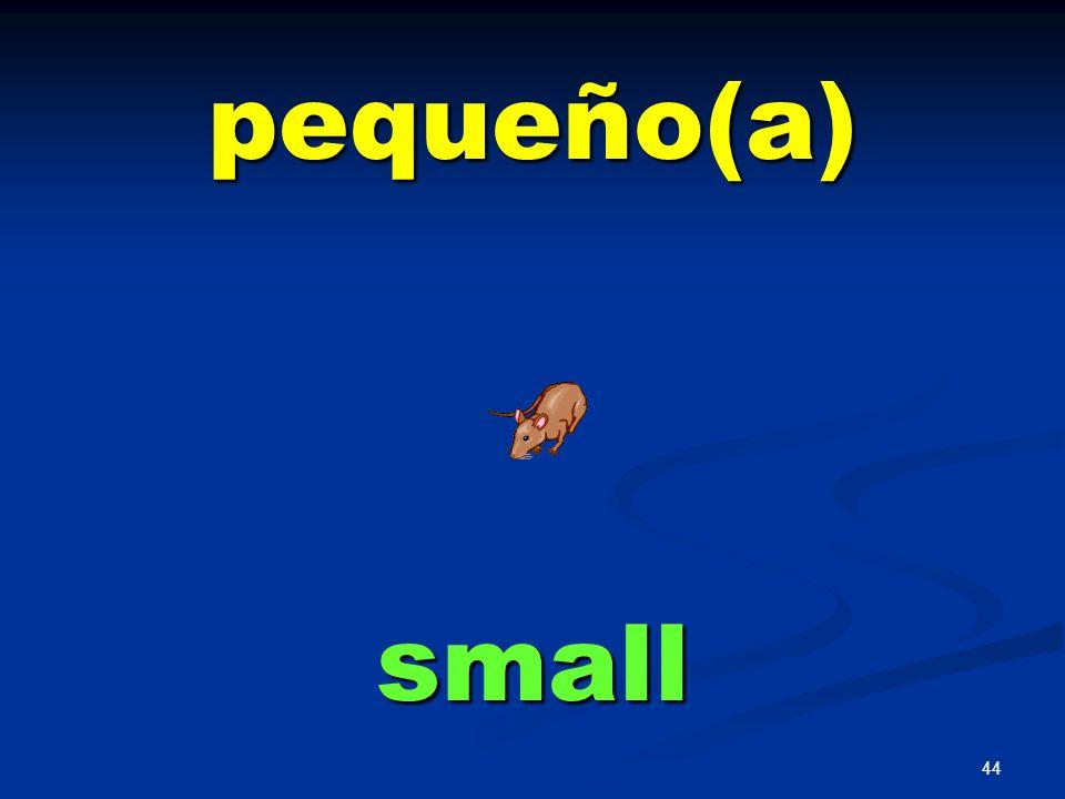 43 mismo(a) same