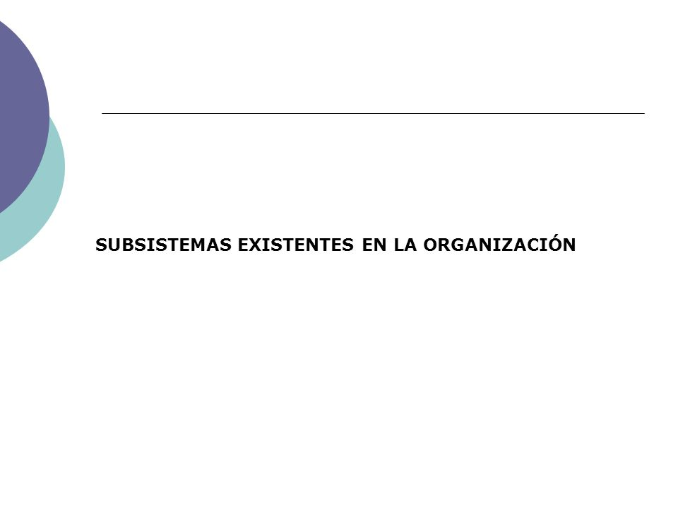 SUBSISTEMAS EXISTENTES EN LA ORGANIZACIÓN