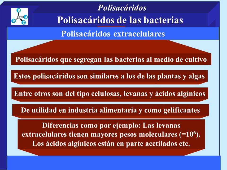 Polisacáridos que segregan las bacterias al medio de cultivo Diferencias como por ejemplo: Las levanas extracelulares tienen mayores pesos moleculares (=10 6 ).