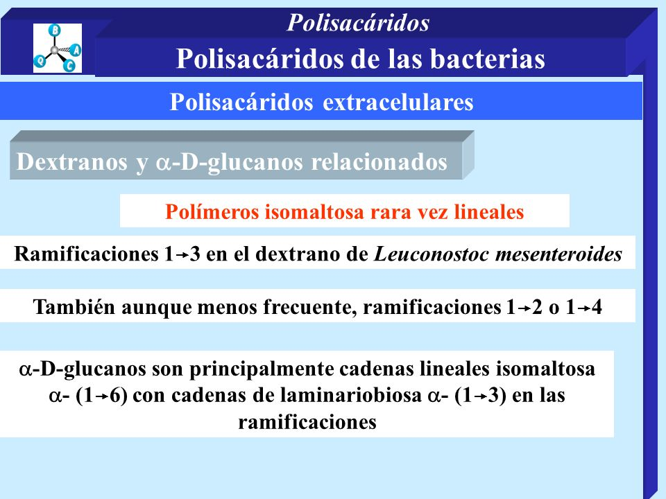 Polisacáridos extracelulares Dextranos y -D-glucanos relacionados Polímeros isomaltosa rara vez lineales Ramificaciones 1 3 en el dextrano de Leuconos