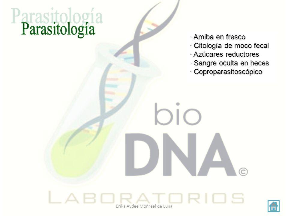 Erika Aydee Monreal de Luna Mobiliario · Mesa alta con respaldo · Cubeta y cesto con bolsa para residuos biológicos infecciosos.