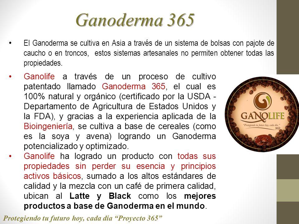 Ganoderma 365 Ganolife a través de un proceso de cultivo patentado llamado Ganoderma 365, el cual es 100% natural y orgánico (certificado por la USDA