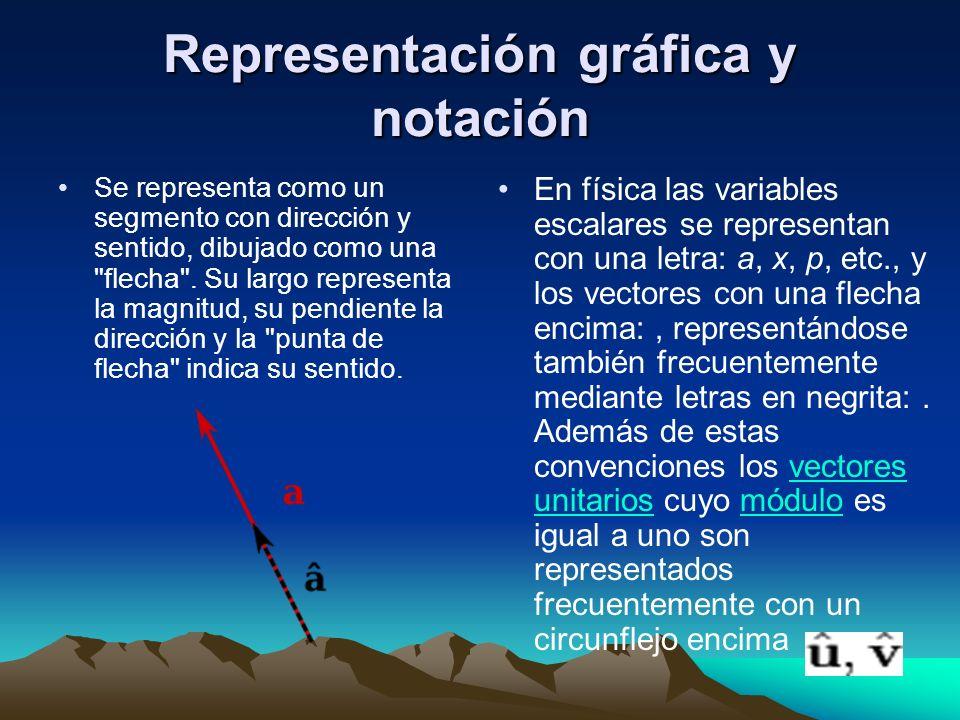 Representación gráfica y notación Se representa como un segmento con dirección y sentido, dibujado como una