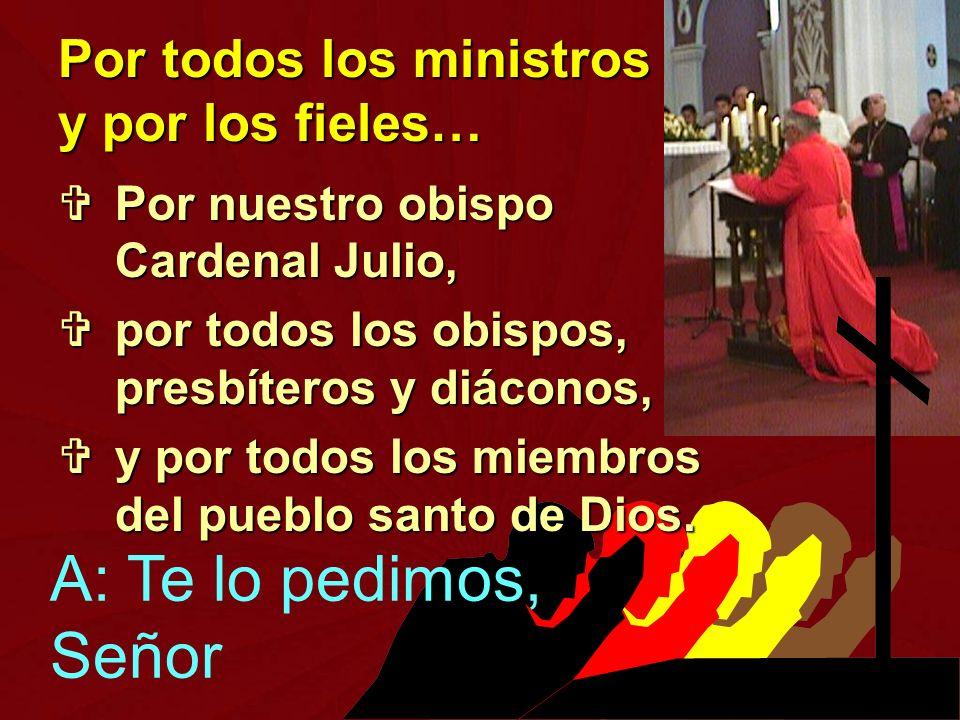 Por nuestro obispo Cardenal Julio, Por nuestro obispo Cardenal Julio, por todos los obispos, presbíteros y diáconos, por todos los obispos, presbítero