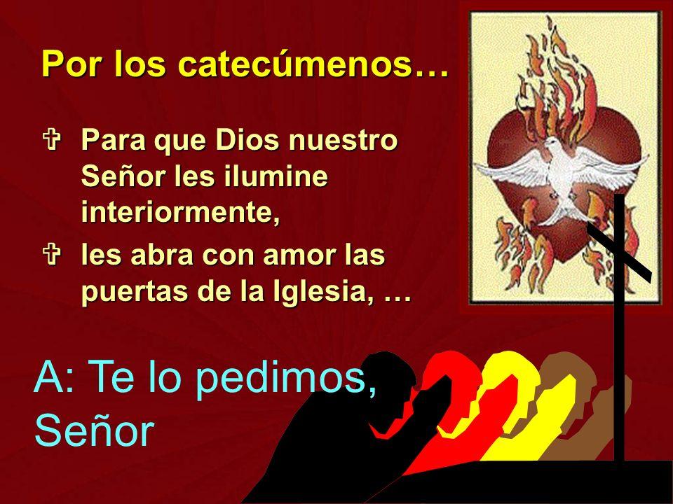 Para que Dios nuestro Señor les ilumine interiormente, Para que Dios nuestro Señor les ilumine interiormente, les abra con amor las puertas de la Igle