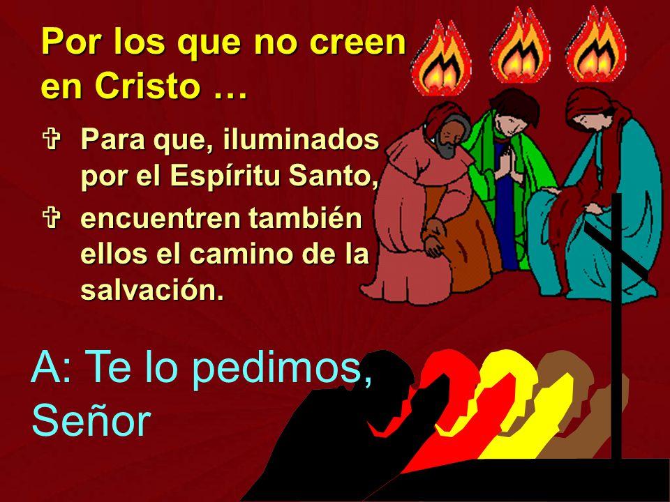Para que, iluminados por el Espíritu Santo, Para que, iluminados por el Espíritu Santo, encuentren también ellos el camino de la salvación. encuentren