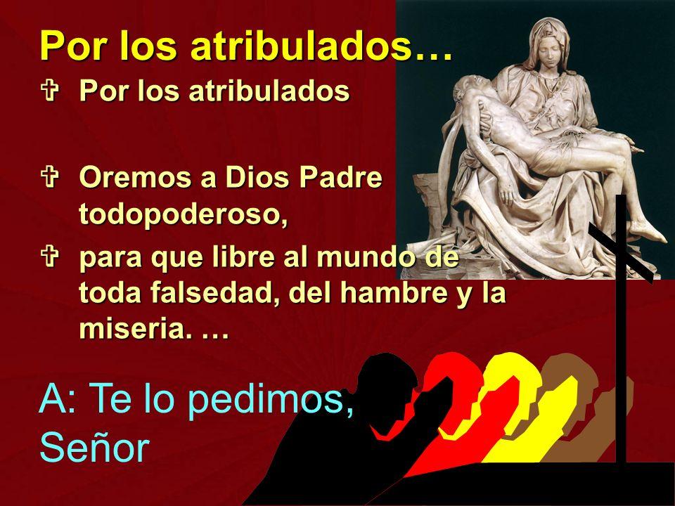 Por los atribulados Por los atribulados Oremos a Dios Padre todopoderoso, Oremos a Dios Padre todopoderoso, para que libre al mundo de toda falsedad,