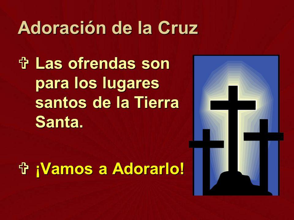 Las ofrendas son para los lugares santos de la Tierra Santa. Las ofrendas son para los lugares santos de la Tierra Santa. ¡Vamos a Adorarlo! ¡Vamos a