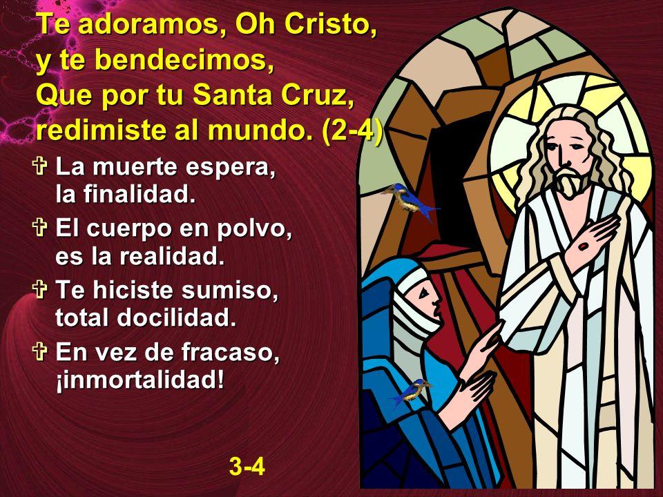Te adoramos, Oh Cristo, y te bendecimos, Que por tu Santa Cruz, redimiste al mundo. (2-4) La muerte espera, la finalidad. La muerte espera, la finalid