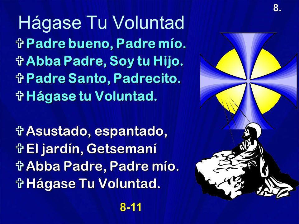 8. Hágase Tu Voluntad Padre bueno, Padre mío. Padre bueno, Padre mío. Abba Padre, Soy tu Hijo. Abba Padre, Soy tu Hijo. Padre Santo, Padrecito. Padre