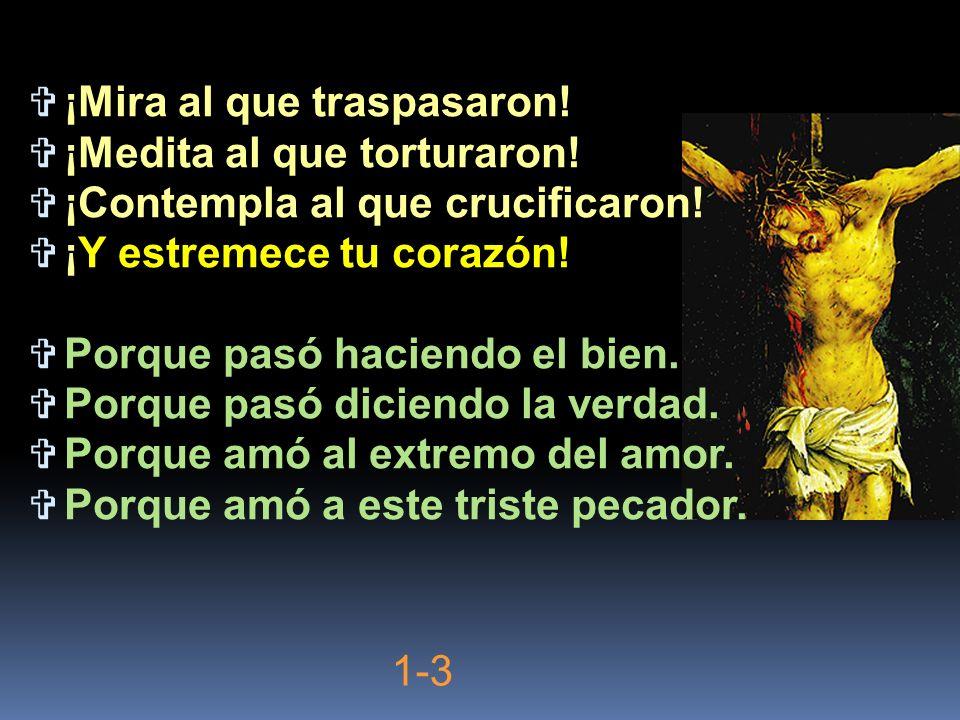 ¡Mira al que traspasaron! ¡Medita al que torturaron! ¡Contempla al que crucificaron! ¡Y estremece tu corazón! Porque pasó haciendo el bien. Porque pas