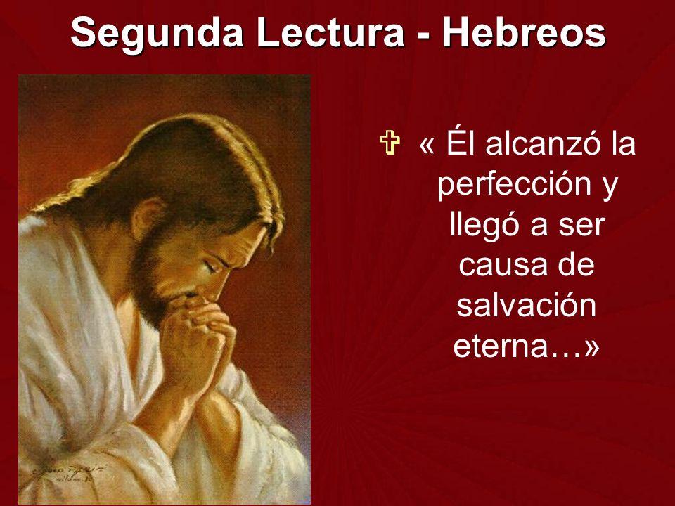 Segunda Lectura - Hebreos « Él alcanzó la perfección y llegó a ser causa de salvación eterna…»