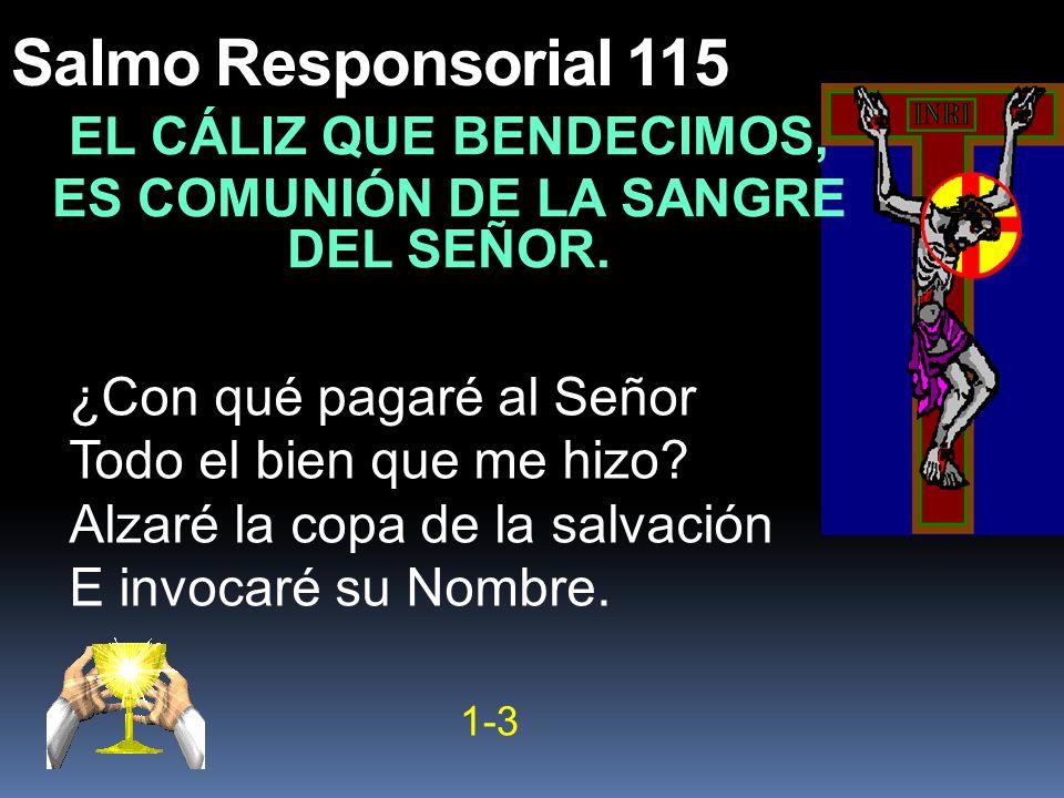 Salmo Responsorial 115 EL CÁLIZ QUE BENDECIMOS, ES COMUNIÓN DE LA SANGRE DEL SEÑOR. ¿Con qué pagaré al Señor Todo el bien que me hizo? Alzaré la copa