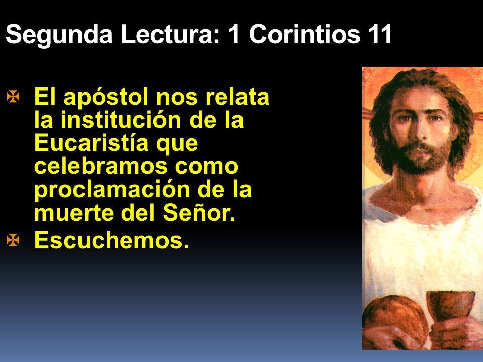 Segunda Lectura: 1 Corintios 11 El apóstol nos relata la institución de la Eucaristía que celebramos como proclamación de la muerte del Señor. Escuche